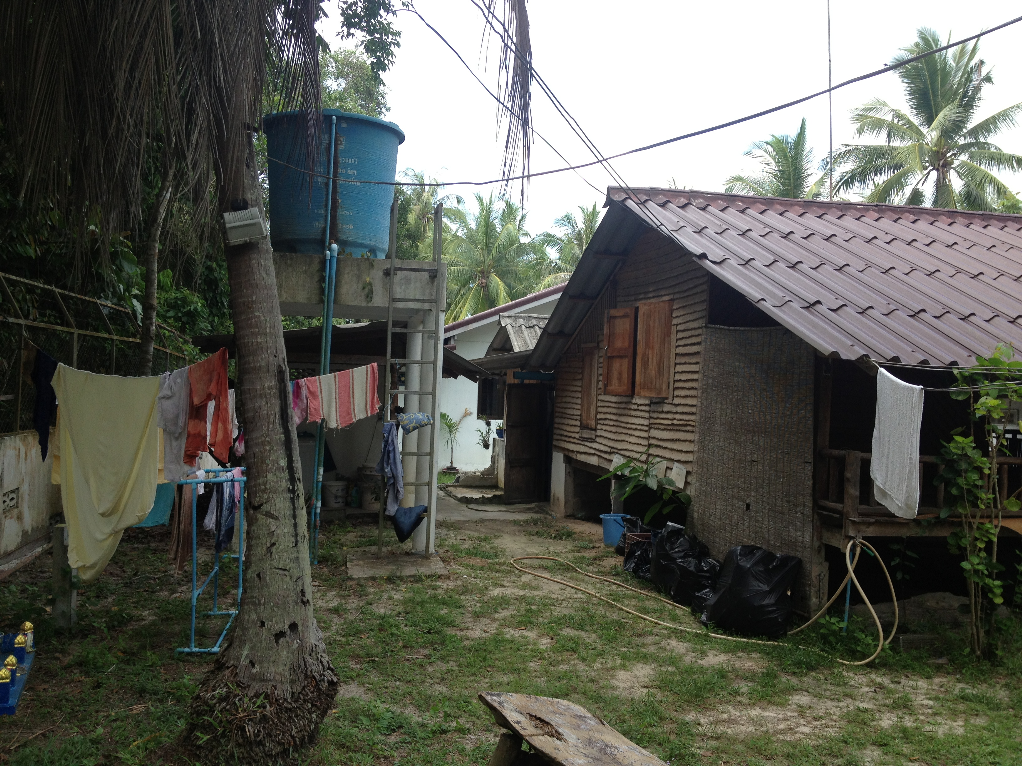 Phangan Animal Care grounds