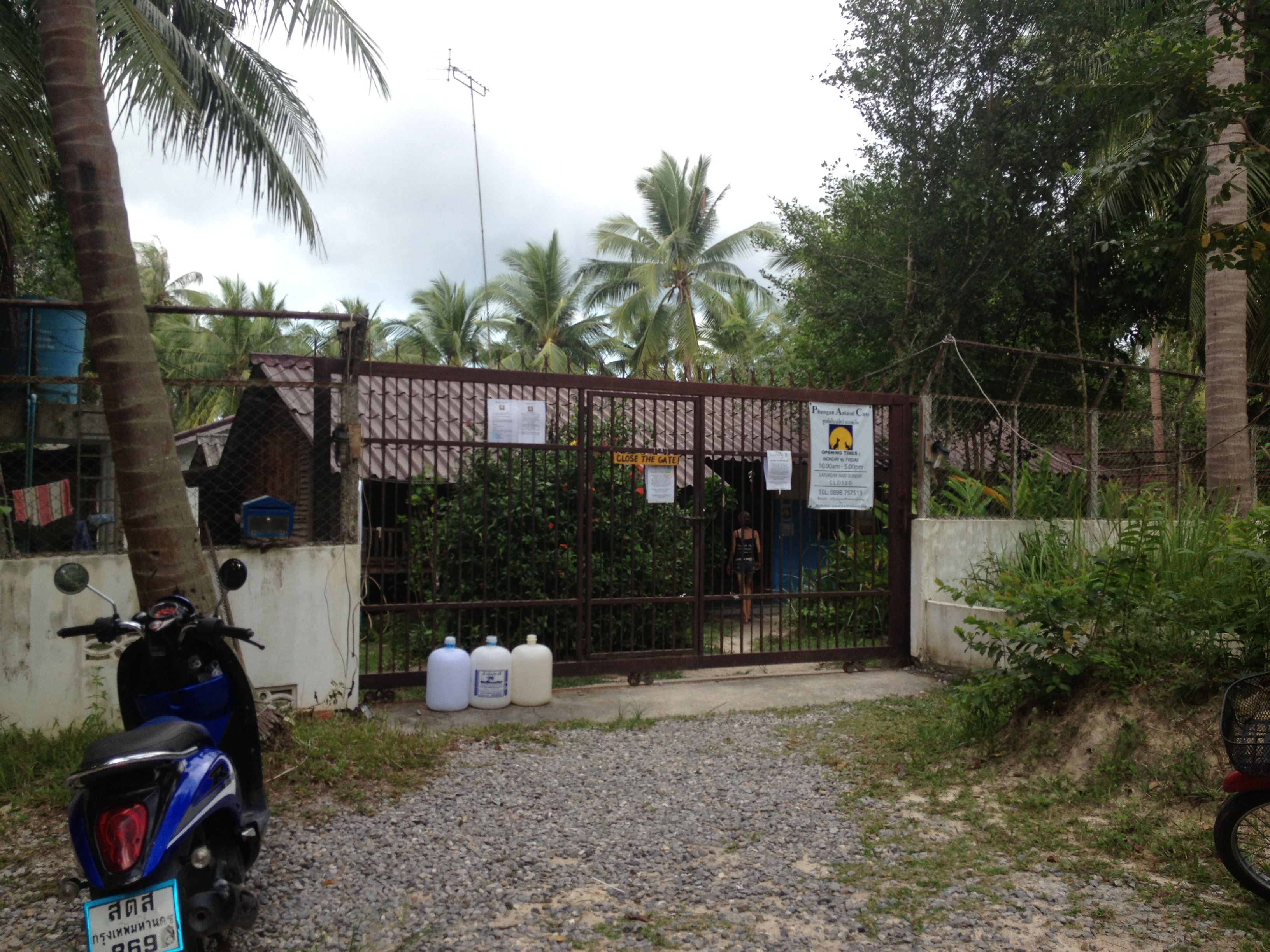 Phangan Animal Care entrance