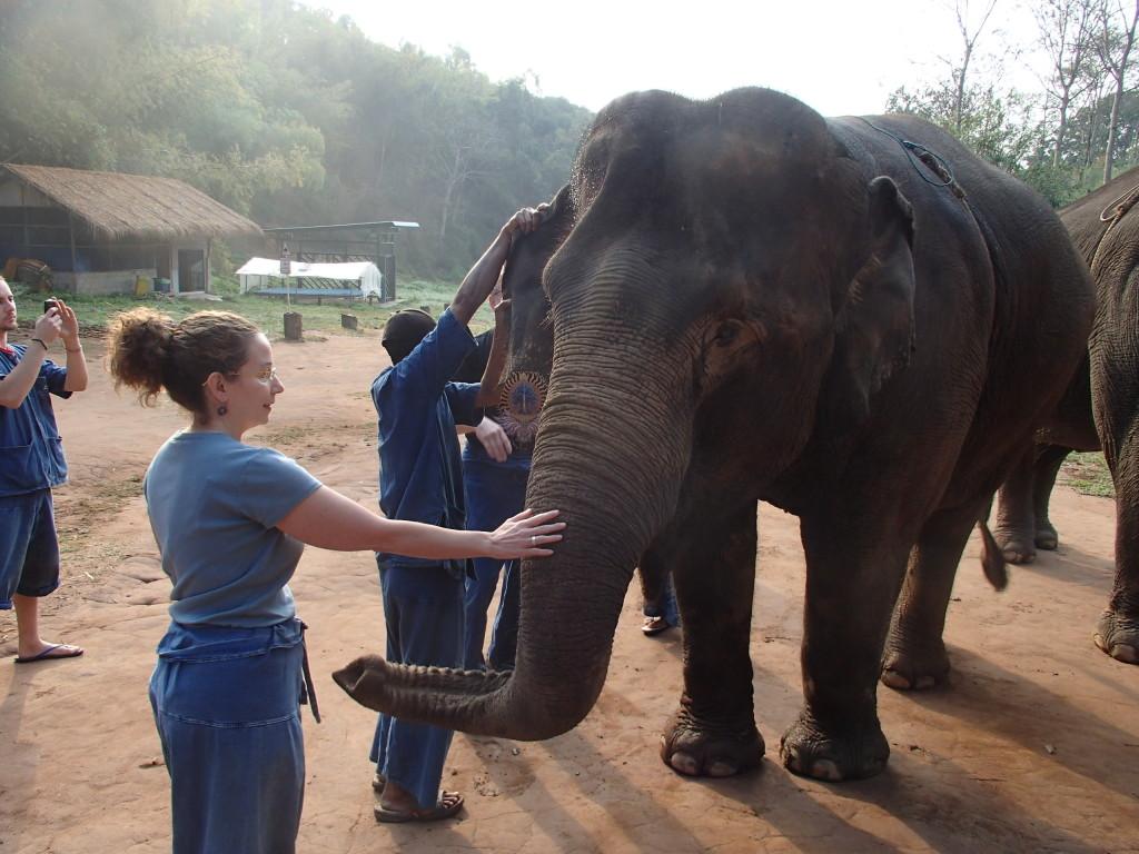 Anantara elephant camp Thailand