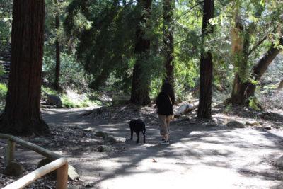 Lori and Indy Santa Barbara Botanic Garden