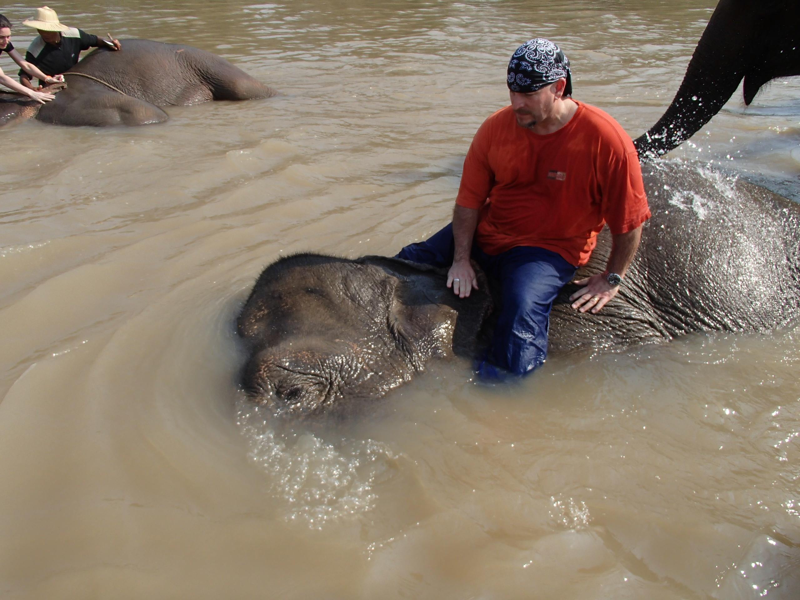 Elephant Camp Anantara