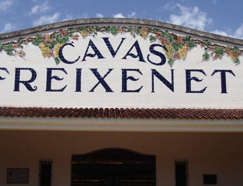 Barcelona Day Trip: Cava Region