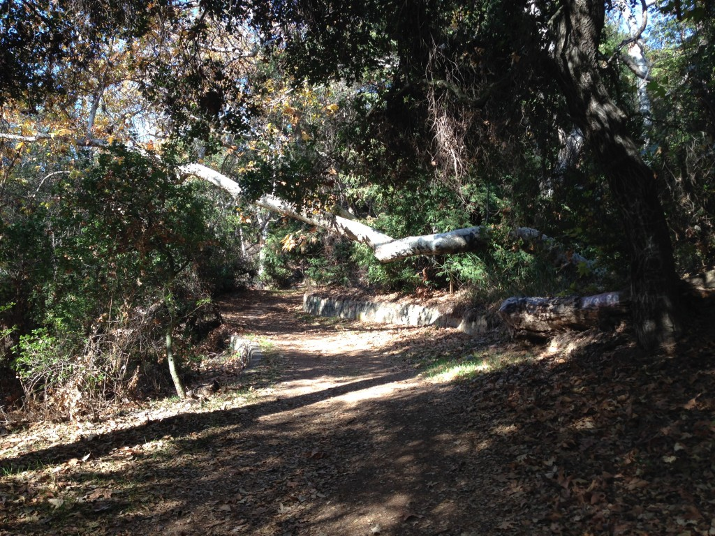 Rustic Canyon Trail
